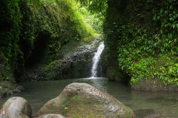Maunawili Falls - Who's Ready for a Swim?!