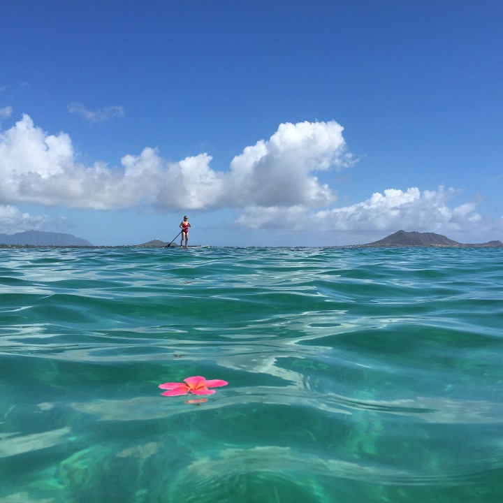 Yet another successful Stand-Up Paddler and a beautiful day in Kailua Bay.