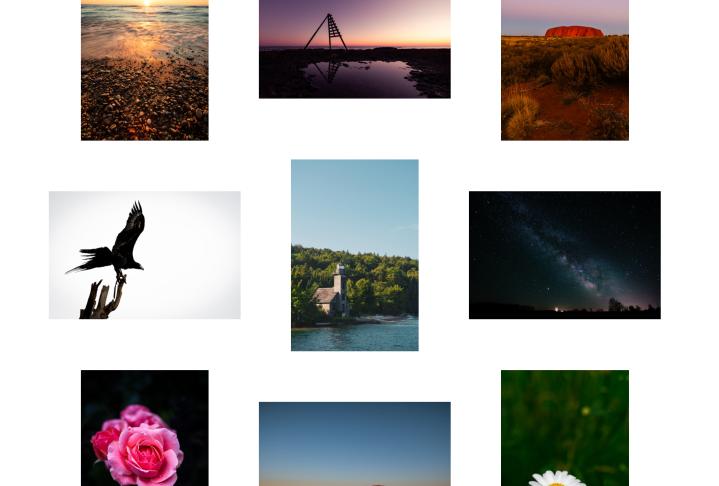 Tristen Roman's Photo Gallery