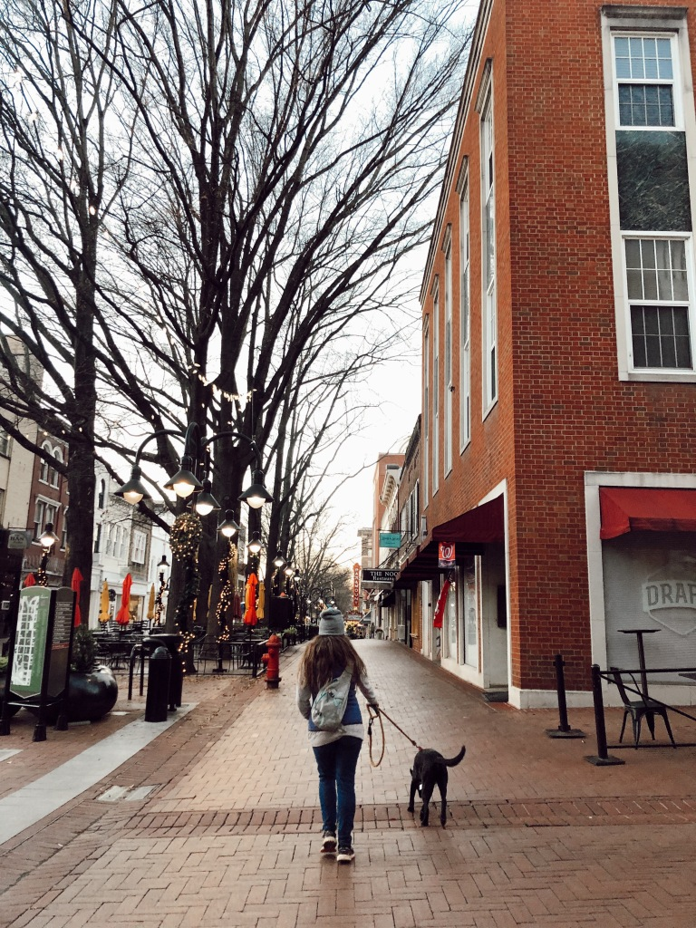 A girl walking her dog on Charlottesville's downtown mall