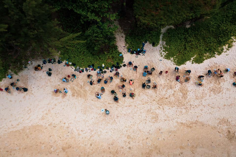 An arial shot of students participating in a beach cleanup